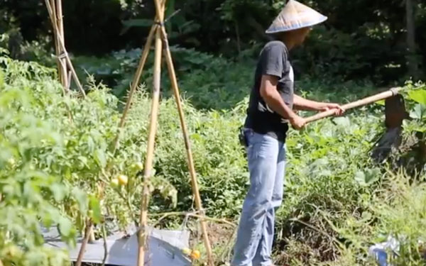 Indonesian male working on land